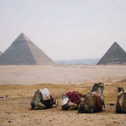 Egypt 5GB 21 Days + FREE eSIM