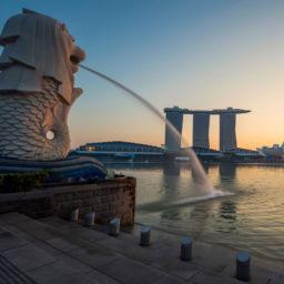 Singapore 7GB 24 Days + FREE eSIM