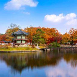 South Korea 7GB 24 Days + FREE eSIM
